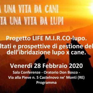 RISULTATI FINALI DEL PROGETTO LIFE M.I.R.Co-lupo.
